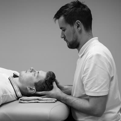 Manualna obravnava v fizioterapiji Vertebrae